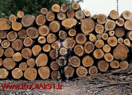 http://up.koolak91.ir/up/koolak91/estetar-img/estetar-2.jpg